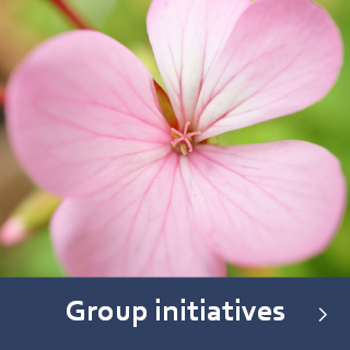 Group initiatives